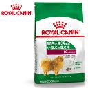 ロイヤルカナン ミニ インドア アダルト 0.8kg 成犬用 チキン ターキー 小型犬 ドッグフード ロイカナ