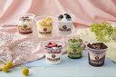 ショッピングアイスクリーム コールド・ストーン・クリーマリー プレミアムアイスクリーム 6個セット