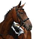 (カレッジエイト) Collegiate 馬用 Syntovia+ パッド入り ライズド カブソン ブライドル 乗馬 ホースライディング 【楽天海外直送】