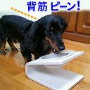 【犬 猫 食器台】傾斜のある食器台(Sサイズ)(フードボウル...