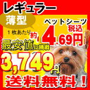 【クーポン】ペットシーツ レギュラー 薄型 800枚 犬、猫問わず使えて経済的! 多頭飼