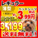 【クーポン】ペットシーツ レギュラー 薄型 800枚 犬、猫問わず使えて経済的! 多頭飼いにもオスス