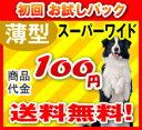 激安!ペットシーツ〔スーパーワイド〕1枚 サンプル 送料無料で100円