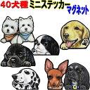 【全犬種対応】マグネット/多頭犬/ミニステッカー/雑貨/グッズ/ミニピン/ゴールデンレトリバー/ラブ