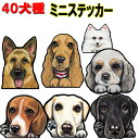 【全犬種対応】多頭犬飼い/ミニステッカー/シール/雑貨/グッズ/ミニピン/ゴールデンレトリバー/ラブ