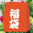 【ご予約品】■お得な福袋■インドアガーデニング園芸福袋シンビ...
