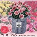 ■母の日ギフト鉢花■♪カーネーションオリジナル麻布生地バスケット入12色の花色からお好きなものを!【楽ギフ_包装】【楽ギフ_メッセ入力】