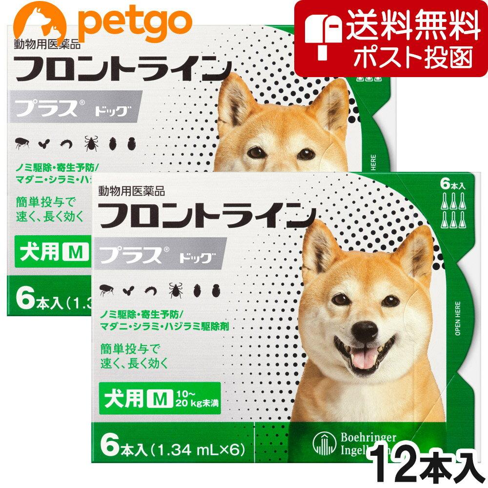 【クロネコDM便専用】【2箱セット】犬用フロントラインプラスドッグM 10kg〜20kg 6本(6ピペット)(動物用医薬品)