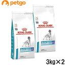 【2袋セット】ロイヤルカナン 食事療法食 犬用 セレクトプロテイン ダック&タピオカ 3kg【あす楽】