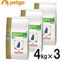 【3袋セット】ロイヤルカナン 食事療法食 猫用 phコントロール2 フィッシュテイスト ドライ 4kg【あす楽】