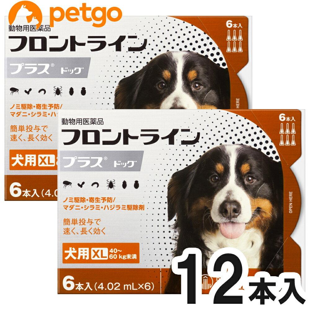 【2箱セット】犬用フロントラインプラスドッグXL 40kg〜60kg 6本(6ピペット)(動物用医薬品)【あす楽】
