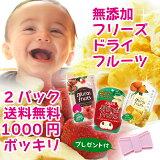 【送料込1000ポッキリ】フリーズドライフルーツ【mirai fruits[いちご] [リンゴ][みかん]から選べる2パックセット】[定形外郵便発送]レビューでリボンビタットプレゼ