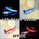 【タイムセール】LEDフラッシュカラー(首輪) Mサイズ〔LED Flash Collar〕ペットと