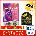 ソリッドゴールド カッツフラッケン 5.4kg [ケイエムティ]◆送料無料(一部地域を除く)◆[P2]02P03Dec16