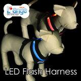 维系与LED闪光harness(躯干圈)XS尺寸〔LED Flash Harness〕宠物的纽带的『L'ange(兰jiyu)』【以评论投稿约定(只邮件投递发送)】【RCP[LEDフラッシュハーネス(胴輪) XSサイズ〔LED Flash Harness〕ペットとの絆を繋