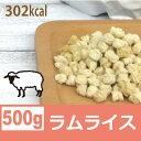 銀座ダックスダックス DD 全犬種対応ホームメイドドッグフード ラムライス 500g