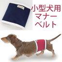 【メール便対応あり】WHCY Mベルト 小型犬用マナーベルト