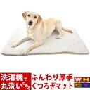 犬 マット 洗える Gマット【Mサイズ:約60×85cm】洗...