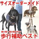 犬用介護ケア・歩行補助に アシストベスト(超小型犬〜超大型犬まで)サイズオーダーメイド可能だから負担も少ない WHCY 高齢犬・シニア犬・老犬用でもデザインが◎...