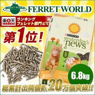 フェレット イエスタディーズニュース 6.8k...の紹介画像2