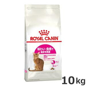 ●ロイヤルカナン セイバー エクシジェント 10kg 食事