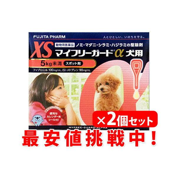2個セットクーポン配布中マイフリーガードαアルファXS犬用5Kg未満3本×2個超小型犬動物用医薬品ノ