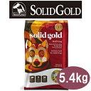ソリッドゴールド ウルフキング 5.4kg