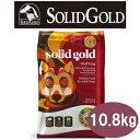 ソリッドゴールド ウルフキング 10.8kg