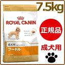 ロイヤルカナン プードル 成犬 7.5kg[AA]【D】[ロイヤルカナン 犬用 ドッグフード イヌ ]【HL532P11May13】 楽天