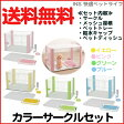 【送料無料】アイリスオーヤマ カラーサークルスターターセット CLS-960S ピンクイエローグリーンブルー【RCP】