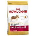 ロイヤルカナン キャバリア アダルト(成犬用) 3kg[AA]【D】 [ロイヤルカナン 犬用 ドッグフード イヌ ] 楽天◆2