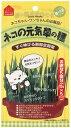 ペティオ猫の元気草の種15G×5P【TC】【TP】 楽天