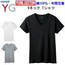 メンズ Vネック Tシャツ グンゼ ワイジー GUNZE YG V首 綿100% M-3L 3col...