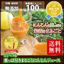 葉っぱ付きまるごと冷凍にんじんジュース 1箱 100cc×30p 冷凍ジュース 無農薬人参 ホールフ...