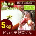 【送料無料】【青森県産】葉とらずりんご 5kg箱 【ピカイチ野菜くん】【リンゴジュース】【家庭用】【B品】【成田り…