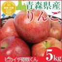 【国産】青森県産 りんご 5kg【サンふじ】 【リンゴ】【訳アリ】【人参ジュース】【ジュース用】