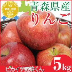 【国産】青森県産 りんご 5kg【サンふじ】 りんごジュースに最適です