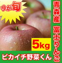 青森県産!旬のりんご 5Kg箱