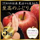 【青森県産】プライドアップル!至高のふじりんご 5kg箱【約16〜20個入り】 ★【特別栽培】【訳あり】【リンゴ ジュース】【家庭用】【贈答用】【ピカイチ野菜くん】