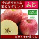 青森県産の葉とらずりんご ふじりんご 3kg【にんじんジュース】【国産リンゴ】【訳あり】