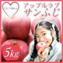 【青森県産】【訳あり】美味しさを追求した絶妙な味!アップルズラブ サンふじりんご 5kg【贈答用】【家庭用】【ピカイチ野菜くん】