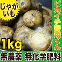 有機JAS認証取得!国産じゃがいも1kg【無農薬・無化学肥料栽培】【ジャガイモ】