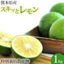 熊本県産特別栽培 スキッとレモン 1kg 国産レモン 訳あり B品 ジュース用 クエン酸