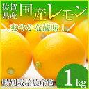 【特別栽培農産物】【佐賀県産】国産レモン1kg