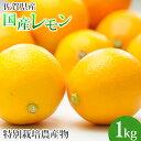 特別栽培農産物 佐賀県産 国産レモン1kg マイヤーレモン 人参ジュース 訳あり