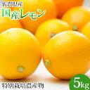 特別栽培農産物 佐賀県産 国産レモン5kg マイヤーレモン 人参ジュース 訳あり