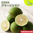 訳あり 佐賀県産特別栽培レモン 1kg 国産 マイヤー リスボン クエン酸 柑橘 人参ジュース