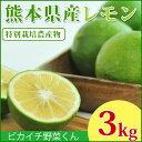 \一度食べたら忘れられない!/【送料無料】熊本県産 スキッとレモン 3Kg 【特別栽培農法