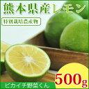\一度食べたら忘れられない!/熊本県産 スキッとレモン 500g 【特別栽培農法】【国産レモ