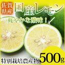 特別栽培農産物 佐賀県産 国産レモン500g マイヤーレモン...